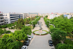 宁阳一中校园美景俯瞰.JPG