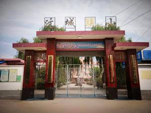新泰市宫里镇汶城联办小学.jpg