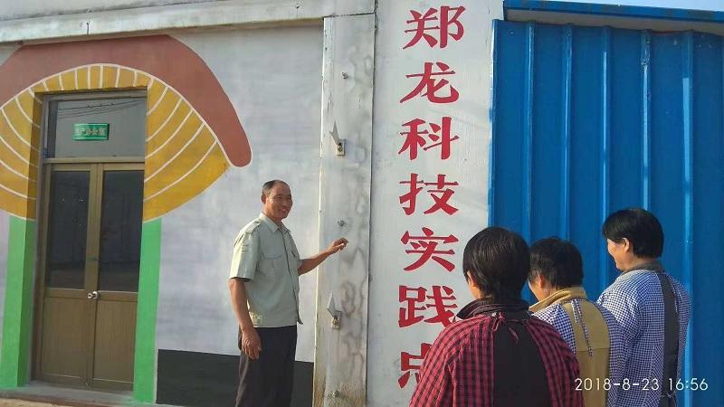宁阳县蒋集镇郑龙村2.jpg